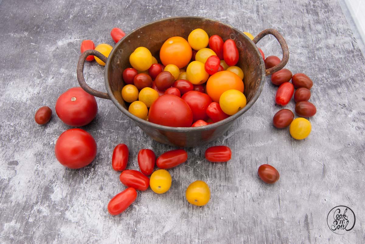 Tomaten Vielfalt