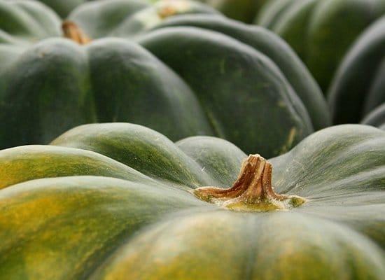 Kürbis Große Sortenvielfalt Auf Dem Teller Cooknsoulde