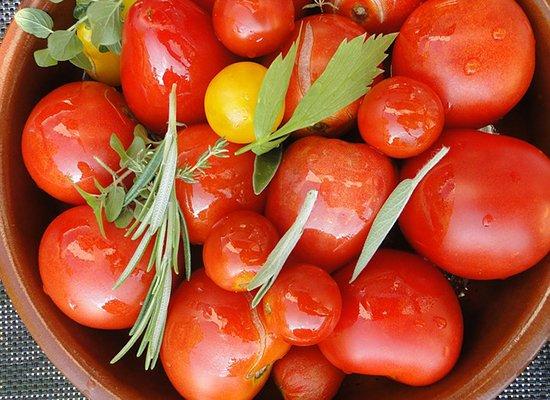 wann tomaten aussehen