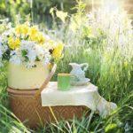 Grüner Tee mit frischer Minze