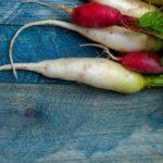 Rettich-Carpaccio mit geraspelten Karotten