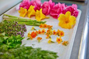Kräuter und Blumen vom eigenen Garten