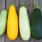 Zucchini Rezepte