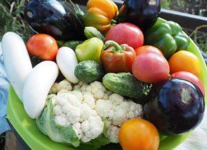 Gemüse im Sommer
