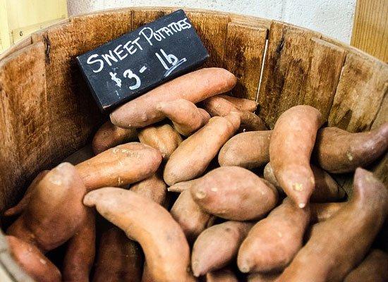 Süßkartoffel Rezepte