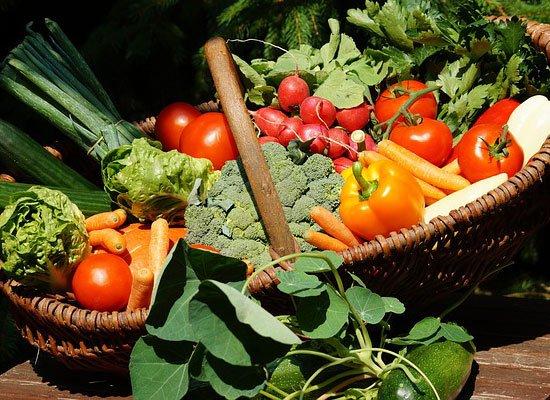 Vegetarische Sommerküche Rezepte : Saisonale rezepte im sommer juni juli august cooknsoul