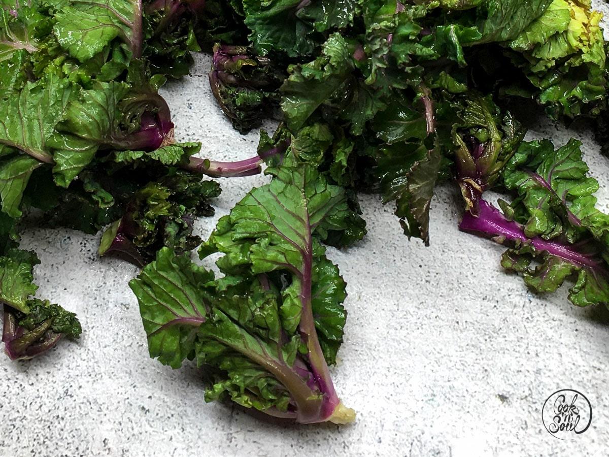 Kohlröschen Flower Sprouts